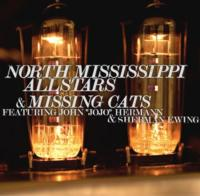 North Mississippi Allstars and Missing Cats Play the Fox Theatre Tonight, 9/14