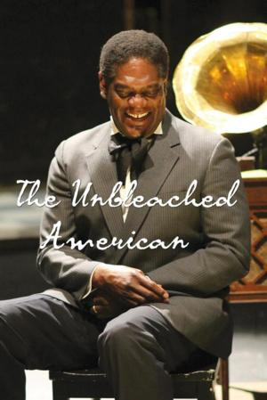 Stoneham Theatre to Present THE UNBLEACHED AMERICAN, 4/10-27