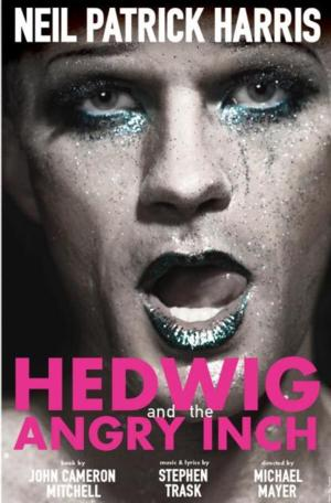 Broadway's HEDWIG AND THE ANGRY INCH Announces Lottery & Standing Room Policy