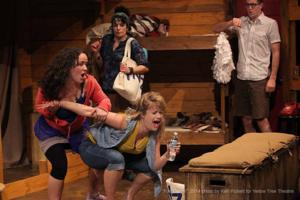 Last Chance to See FAIR GAME at Yellow Tree Theatre, Now Through 5/4