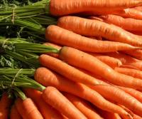 Spanish Theatre Trades in Tickets for Carrots