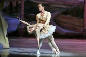 American Repertory Ballet Announces its 50th Annual 'Nutcracker' Season