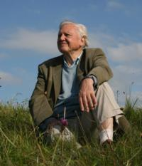 PBS to Air New Mini-Series ATTENBOROUGH'S LIFE STORIES, Beg. 1/23