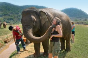 Wild Planet Adventures to Host Weird and Wonderful Wildlife Tours, Winter 2014 and Beyond