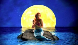 North Shore Music Theatre Presents New England Professional Premiere of THE LITTLE MERMAID, Now thru 7/27