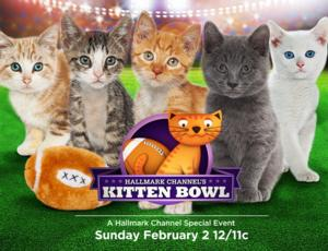 Hallmark Channel to Announces First Annual KITTEN BOWL, 2/2