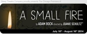 Melissa Riemer, James Allen and Julia Siple Cast in Steep Theatre's A SMALL FIRE, Running 7/10-8/16