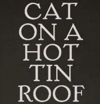 CAT ON A HOT TIN ROOF Stars Benjamin Walker and Ciaran Hinds to Appear on the Leonard Lopate Show Tomorrow