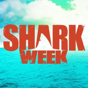 SHARK WEEK Returns to Discovery Channel with More Hours of Shark Programming Than Ever Before, 8/10
