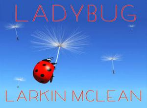 Larkin McLean's Fourth Album 'Ladybug' Now Available