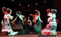 La Rosa Brings EN AL FLAMENCO TABLAO to Artscape Theatre, Now thru Feb 23