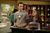 Science-Pays-Tribute-to-BIG-BANG-THEORYs-Sheldon-Cooper-With-Naming-of-New-Bee-Species-20010101