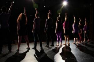 SEIZE THE STAGE: A Musical Revue Benefit for Epilepsy Set for Wilmette Recreation, July 30