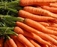 Un teatro de Gerona deja las entradas y se pasa a las zanahorias