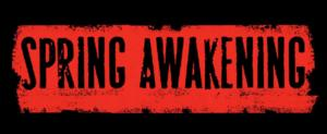 Breaking News: SPRING AWAKENING Film to Begin Production This Year?