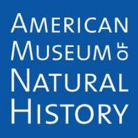 AMNH to Host 2013 Winter Dance, April 18