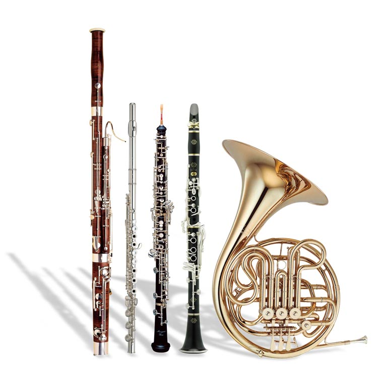 Instruments used in a Wind Quintet