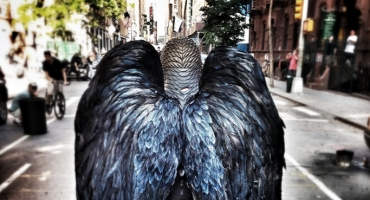 BIRDMAN Tops 2015 SPIRIT AWARD Nominees; Full List Announced!