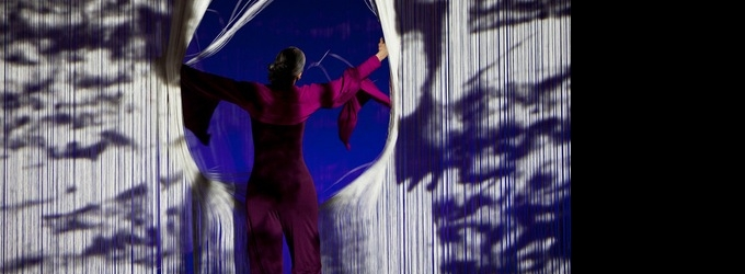 BWW Reviews: CARMEN DE LAVALLADE Doesn't Rest at JACOBS PILLOW