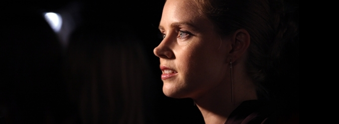 VIDEO: Amy Adams Wows Karaoke Crowd with WICKED's 'Defying Gravity'