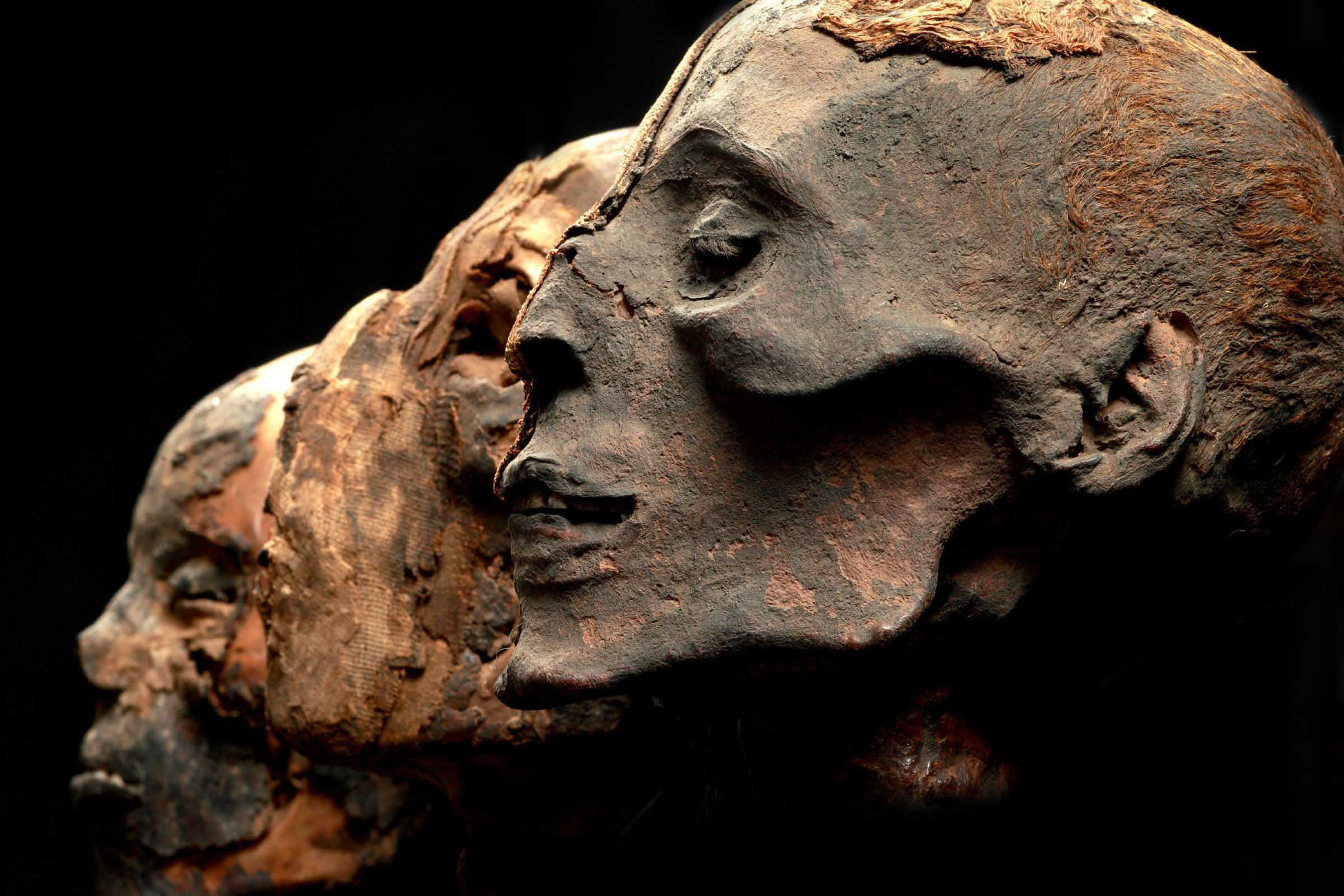 Mummies Of The World Exhibition To Open September 28 In Baltimore At The Maryland Science Center