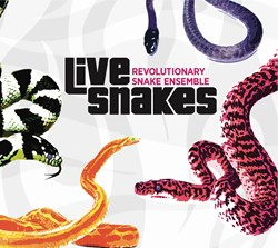 Accurate Records to Release Ken Field's 'Live Snakes', 3/11