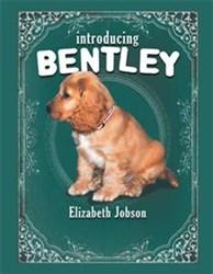 'Introducing Bentley' by Elizabeth Jobson is Released
