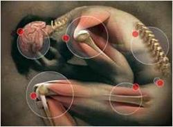 Newport Beach's Pain Management Specialist, Dr. Scott Stoney Releases 'PAIN'