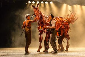 Tickets to WAR HORSE's 2014 Run at Bob Carr Performing Arts Centre On Sale this Friday