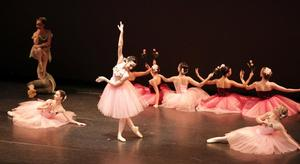 Princeton Ballet School's Summer Intensive Program to Present AN EVENING OF DANCE, 7/25