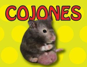 COJONES to Run Last Friday of Every Month at The PIT Beginning 1/31
