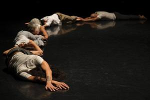 Dancemakers 40th Anniversary Gala Fundraiser Set for 4/3