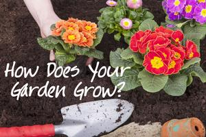 Stories on Stage to Present HOW DOES YOUR GARDEN GROW? with Special Guest Kathleen Chalfant, 5/4