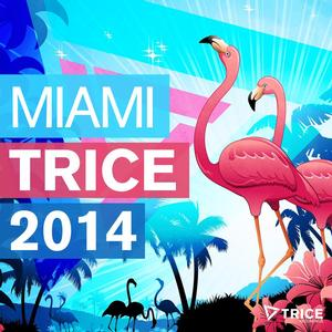 MIAMI TRICE 2014 Out 3/17 via beatport