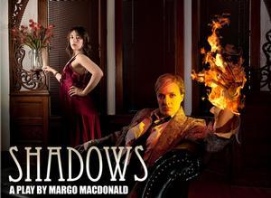 SHADOWS Opens Today at Videofag