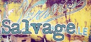 First Folio Theatre Stages World Premiere of SALVAGE, Now thru 4/27