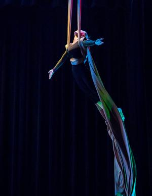 Blue Lapis Light's SHADOWS OF THE HEART Aerial Dance Showcase Set for Tonight