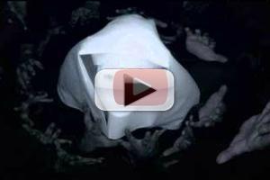 VIDEO: New Teaser for FX's AMERICAN HORROR STORY: ASYLUM