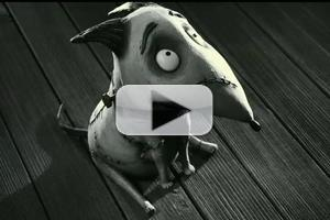 New Clip: Frankenweenie - In Theaters October 5th, 2012