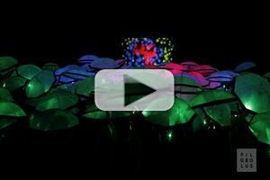 STAGE TUBE: Behind the Scenes of Pilobolus' UP: THE UMBRELLA PROJECT