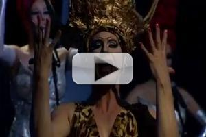 STAGE TUBE: First Look at Brazil's PRISCILLA, A RAINHA DO DESERTO - Highlights!