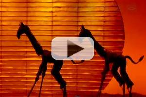 Video: ABC News Airs THE LION KING: Making of the Highest-Grossing Musical