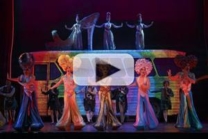 BWW TV Exclusive Premiere: PRISCILLA QUEEN OF THE DESERT National Tour- Performance Montage!