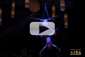 STAGE TUBE: Performance Highlights of AIDA - Now Playing at the Pantages Thru 1/27