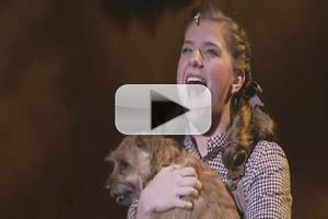 STAGE TUBE: THE WIZARD OF OZ's Danielle Wade Talks Playing 'Dorothy' in Toronto