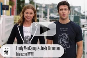 BWW TV: REVENGE's Emily VanCamp & Josh Bowman Release PSA for WWF