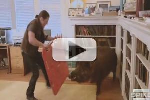 VIDEO: First Look: Spike TV's New Series URBAN TARZAN