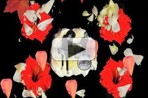 VIDEO: Japanther's 'Stolen Flowers' Music Video