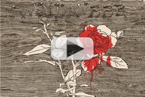 AUDIO: Vandaveer Offers 'Omie Wise' Download; Extends Summer Tour