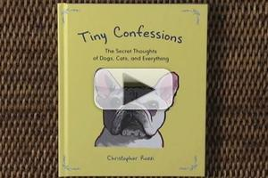 VIDEO: Check out Highlights from TINY CONFESSIONS